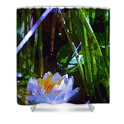 Pond Lily 28 Shower Curtain