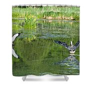 Pond Pairs Dancing Shower Curtain
