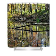 Pond Reflects Shower Curtain