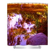 Pond Reflextions Shower Curtain