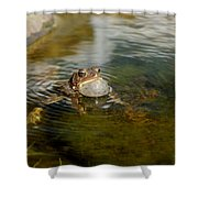 Pond Song Shower Curtain