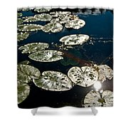 Pond Sunset Shower Curtain