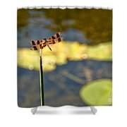 Pond Visitor Shower Curtain