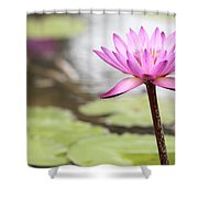 Pond With Pink Water Lily Flower Shower Curtain