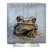 Pondering Frog Shower Curtain