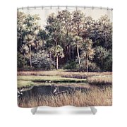 Ponte Vedre II Shower Curtain
