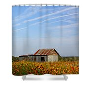 Pontotoc Shed 2am-110573 Shower Curtain