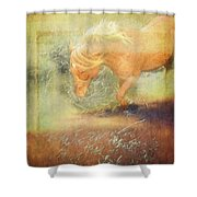 Pony In The Grasses Shower Curtain