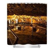 Pool Path Shower Curtain