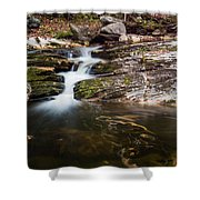 Pooling River Shower Curtain