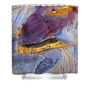Pools Of Gold II Shower Curtain