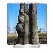 Poor Twisted Tree Shower Curtain