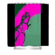 Pop Art Shoes In Pink Shower Curtain