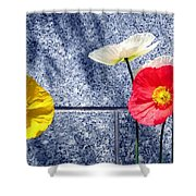 Poppies And Granite Shower Curtain