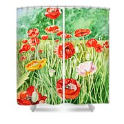Poppies Collage I Shower Curtain