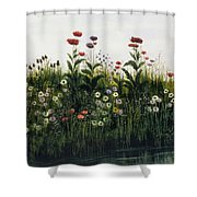 Poppies, Daisies And Thistles Shower Curtain