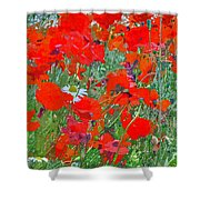 Poppies II Shower Curtain