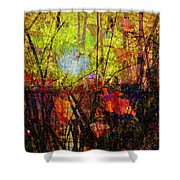 Poppies In Paradise Shower Curtain