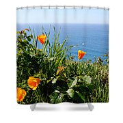 Poppies On The Pacific Shower Curtain