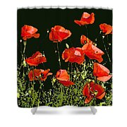 Poppy Art Shower Curtain