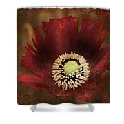 Poppy At Days End Shower Curtain