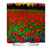 Poppy Carpet  Shower Curtain