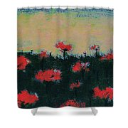 Poppy Field Shower Curtain