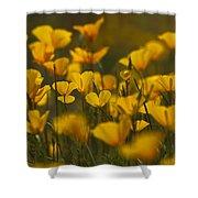 Poppy Field  Shower Curtain
