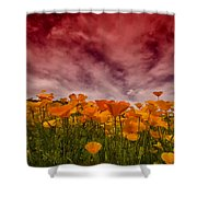 Poppy Fields Forever Shower Curtain