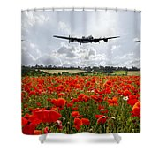 Poppy Fly Past Shower Curtain