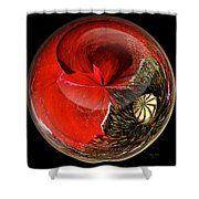 Poppy Globe Shower Curtain