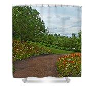 Poppy Path Shower Curtain