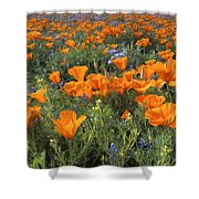 Poppy Perfection Shower Curtain