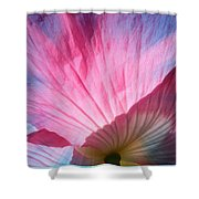 Poppy Rays Collage Shower Curtain