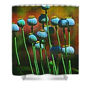 Poppy Seed Pods Shower Curtain