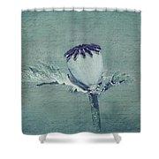 Poppy Still Life Shower Curtain