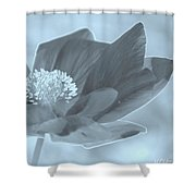 Poppy Tinge Shower Curtain