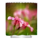 Popsicle Pink Shower Curtain