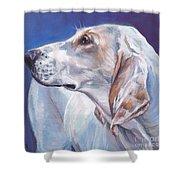 Porcelaine Hound Shower Curtain