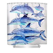 Porpoise Play Shower Curtain by Carey Chen