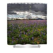 Porter Ranch Wildflowers   Shower Curtain