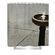 Portland Drinking Water Fountain Shower Curtain