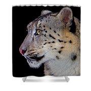 Portrait II Of A Snow Leopard Shower Curtain