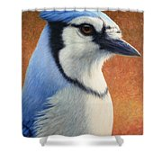 Portrait Of A Bluejay Shower Curtain
