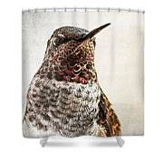 Portrait Of A Hummer Shower Curtain