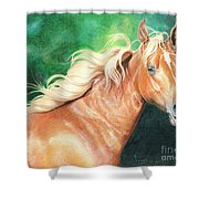 Portrait Of A Palomino Shower Curtain