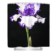 Portrait Of An Iris Shower Curtain
