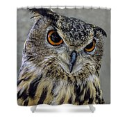 Portrait Of An Owl Shower Curtain