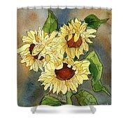 Portrait Of Sunflowers Shower Curtain