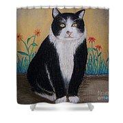 Portrait Of Teddy The Ninja Cat Shower Curtain
